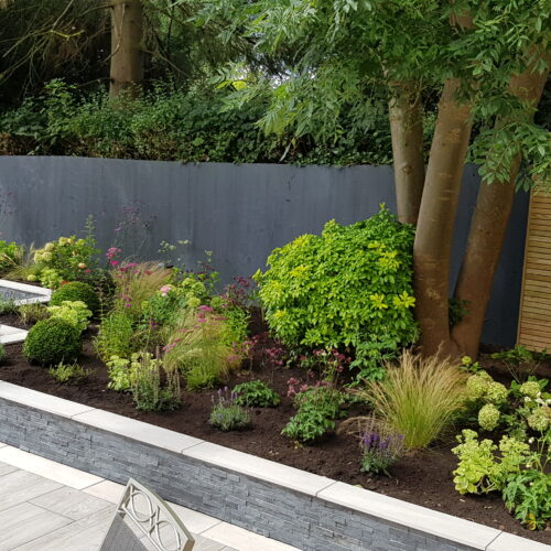 Contemporary Rear Garden- Stone, Staffordshire